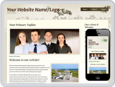 Website Design 14